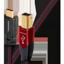 Audioquest Cinnamon USB B - Type C