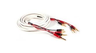 Cables Enceintes Montés
