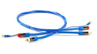 Cables Bras Vinyle